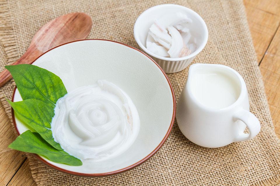 Sử dụng bột hương dừa vào quy trình sản xuất thạch dừa công nghiệp